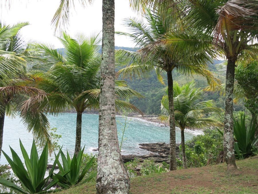 o-que-fazer-em-maresias-litoral-norte-sao-paulo-praia-de-calhetas-peninsula
