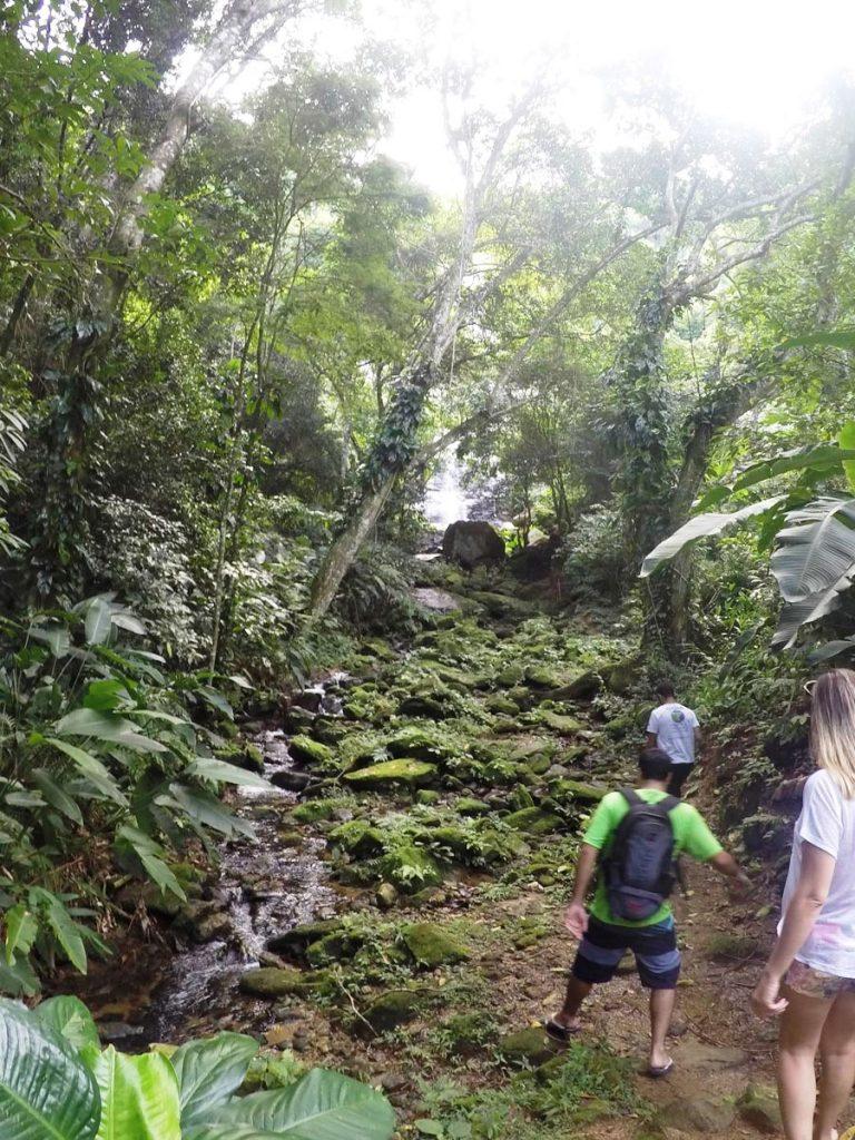 o-que-fazer-em-maresias-litoral-norte-sao-paulo-trilha-cachoeira